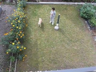 あたしのお庭.jpg