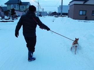 兄さまと散歩.jpg