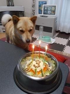 3歳の誕生日1.jpg